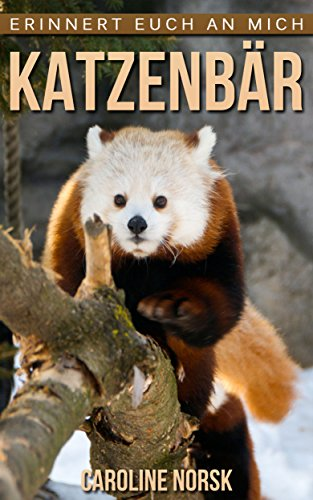 Katzenbär: Ein Kinderbuch mit erstaunlichen Fotos und interessanten Fakten über Katzenbär (Erinnert euch an mich Serie)