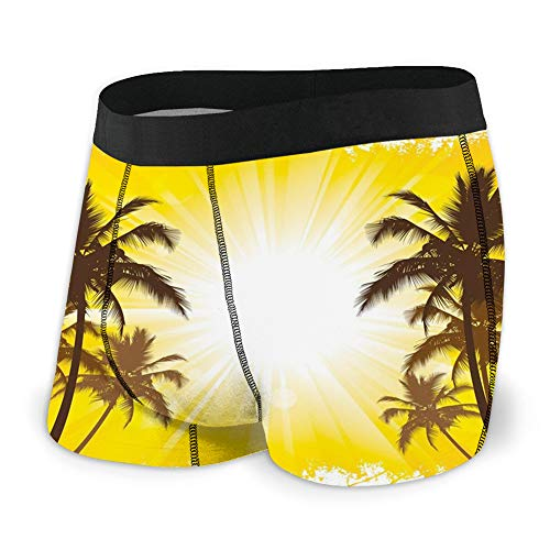 Men's Underwear Sports Boxer Briefs, Holiday Theme a Sunny Tropical Place with Palm Trees Illustration Print,L -