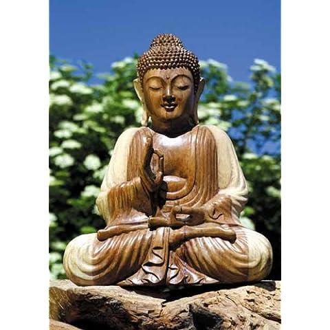 Berg jnana Mudra Estatua de Buda, Soar Madera, 50cm