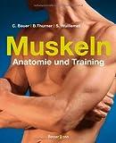 Muskeln - Anatomie & Training - Bernd Thurner