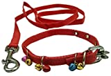 #7: Sollar'S Nylon Puppy Dog Collar Belt & Leash