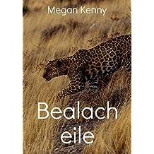 Bealach eile (Irish Edition)