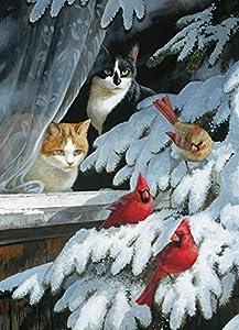 Cobblehill 57171 MO 1000 - Puzzle para pájaros