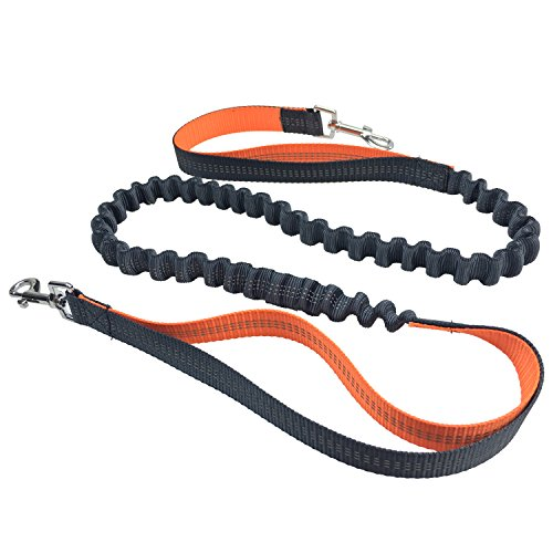 Hands-Free-Dog-LeadECANDY-Durable-Handle-Shock-Absorbing-Extendible-BungeeStretches-to-75-Adjustable-Waist-Belt-with-Reflective-Stitching-For-Running-Walking-Training-for-Medium-Large-Dog-Orange