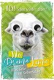 Geburtstagskarte Lama mit Kulleraugen | Geburtstagskarte lustig | Geburtstagskarte Set mit Umschlag | Glückwunschkarte zum Geburtstag | Karte mit Motiv | Klappkarte inkl. Umschlag