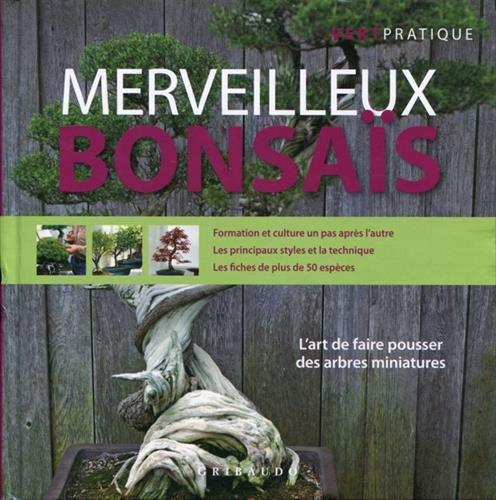Merveilleux bonsaïs par Tiziano Zanini