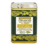 Olivenöl aus APULIEN, Italien | EXTRA NATIV | EXTRA VERGINE | PREMIUM-Qualität | Kontrolliert KALTGEPRESST | 3 Liter Kanister