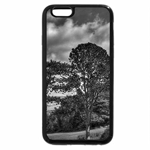 iPhone 6 Plus Case (Black & White) - trees on the side of a hill with great view hdr ()