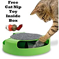 Catch the Mouse Motion Chase Toy For Cat and Kittens