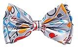 Argenté noeud Papillon coloré notes de musique