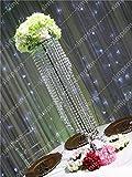 BeesClover - Soporte para Flores (10 Unidades, Cristal acrílico, 119,3 cm, para decoración de...