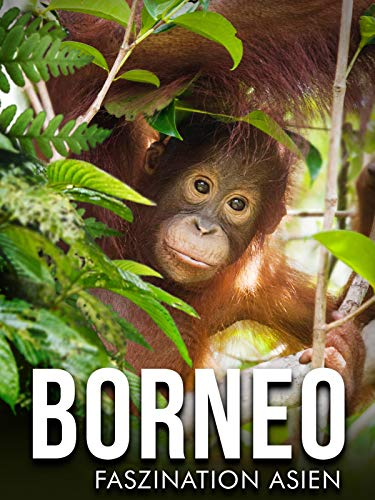 Borneo - Faszination Asiens