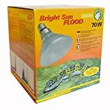 Lucky Reptile BSFD-70 - Bright Sun FLOOD Desert 70W
