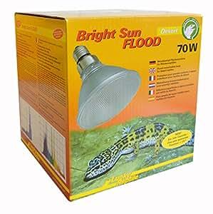 Lucky Reptile Bright Sun UV Desert flood, 70 Watt