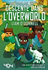 Descente dans l'overworld - Minecraft par O'Donnell