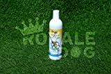 Best Dog Shampoo For Itchy Skins - Royale Dog Shampoo Will Assist in clearing Away Review