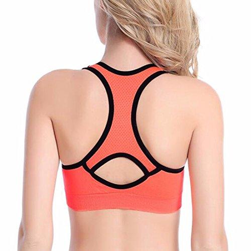 QIYUN.Z Gym Femmes Exerçant Veste Sport Actif Yoga En Tête De Soutien Élevé L'Impact De Soutien Du Sport Orange