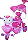 Sunbaby Cutie Tricycle (Pink)