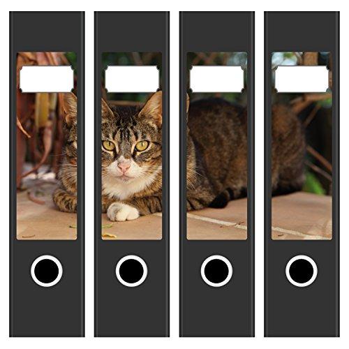 4 x Akten-Ordner Etiketten / Aufkleber / Rücken Sticker / mit Design Motiv Süße Katze / für breite Ordner / selbstklebend / 6cm breit