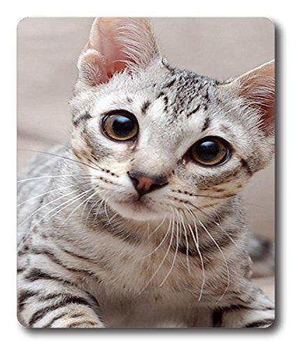 Aluminium überrascht Katze Tier Maus Mats Pad und einsehbar 19,1x 22,9cm