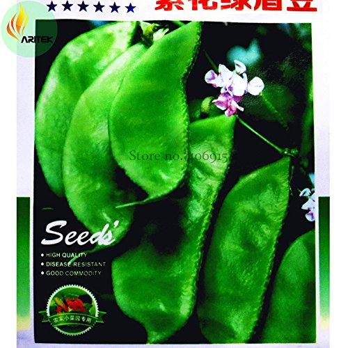 Pinkdose® 2018 Neu eingetroffen !!Heirloom 'Jinke' Grüne Hyazinthe Bohne Bio-Samen, 15 Samen, Original-Packung, mit lila Blüten Köstliches Gemüse OJK021Y (Bohne Samen Lila)