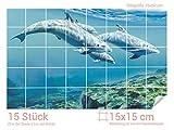 Graz Design 761204_15x15_50 Fliesenaufkleber Delfinen unter Wasser | Bad-Fliesen mit Fliesenbildern überkleben (Fliesenmaß: 15x15cm (BxH)//Bild: 75x50cm (BxH))