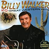 20 Great Western Hits [Import USA]