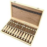 CLE DE TOUS - Caja de 12 Cinceles para Tallar Madera Cuchillas Formones para Grabar Madera