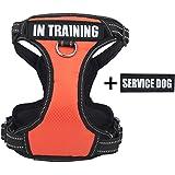 Hundegeschirr Service Dog/In Training Power & Qualität Hunde Geschirr Brustgeschirr für Kleine Mittle Große Hunde