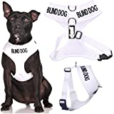 BLIND DOG (Dog Has Limited/No Sight) White Colour Coded Non-Pull Front and Back D Ring Padded and Waterproof Vest Dog Harness PREVENTS Accidents By Warning Others Of Your Dog In Advance (M)