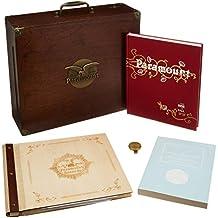 The Rise & Fall of Paramount Records 1917-1927,Vol [Vinyl LP]