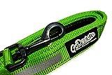 GoDoggie-GLOW Reflektierende Hundeleine - Premium Qualität, Bequemer Schaum gepolsterter Griff, reißfestes Nylon Gewebe, D-Ring, Lebenslange Garantie - 120cm Länge - Grün