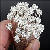 Miaoo 40PCS cristallo STRASS e perle fiore forcine per capelli perfetto accessorio per tutti i giorni