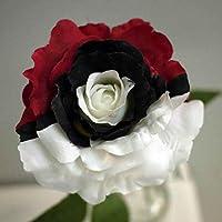 Semillas de Rosas Multicolor 50 PCS Semillas de Flores Raras para Jardin, Huerto, Balcon Interior