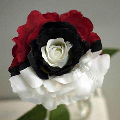 Semillas de Rosas Multicolor 50 PCS Semillas de Flores Raras para Jardin,...