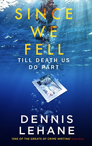 Since We Fell (English Edition)