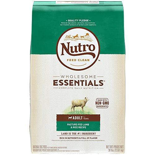 nutro-natural-choice-lamb-and-rice-recipe-healthy-skin-coat-adult-dog-food-30-lbs