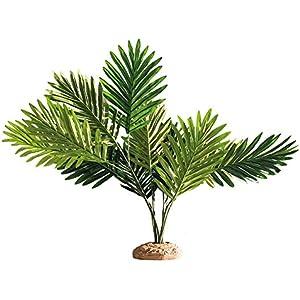 Hobby 37001 Palm / Palme