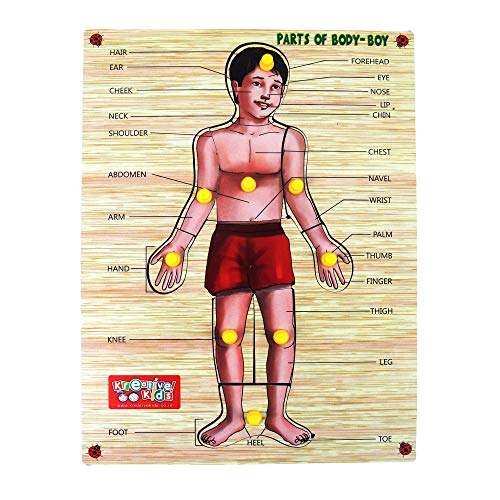 Webby Premium Wooden Parts of Body Boy Educational Puzzle Toy