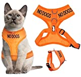 Dexil Katzengeschirr, farbkodiert, Warnweste, gepolstert und wasserfest, warnt andere im Voraus vor Ihrer Katze