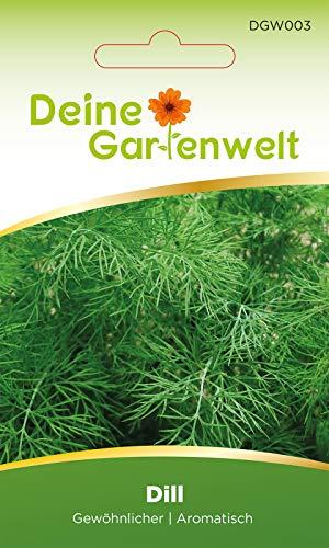 Dill Gewöhnlicher Kräutersamen - Dillsamen für Küchenkräuter oder als Samen für Kräuter im Garten