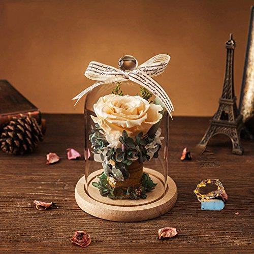 Boîte de cadeau fleur éternelle,Verre Géant rose Conservé ornements fleur Bouquets créatifs Anniversaire Noël Lumière]-D 18x14cm(7x6inch)