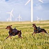 PETKIT HA8GYM Air Compression Dog Harness, Medium