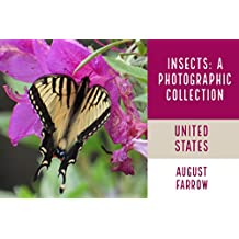 Insects & Arachnids: A Photographic Collection: The United States (English Edition)