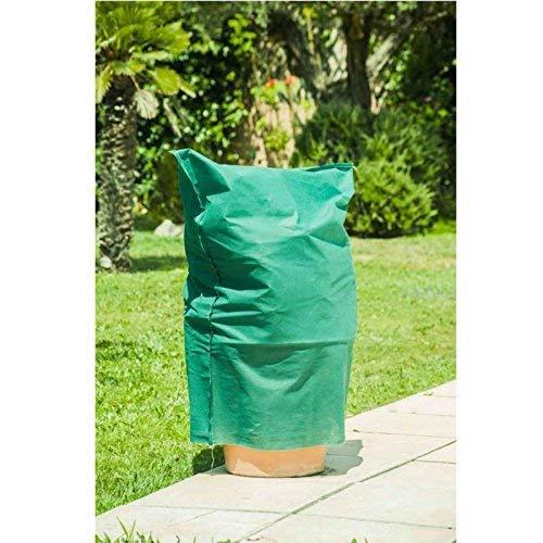 sodipa 06759Schutzhülle für Pflanze Grün 80x 100cm 60g 5teilig