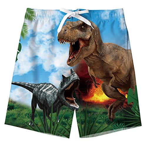 Big Niño's Bañador Pantalones Cortos Impreso Verano Secado Rápido Bañador Short Dinosaurio Niños...