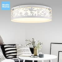 BGmdjcf Il Nordic lampada da soffitto LED spia luci di camere da letto soggiorno luce moderna illuminazione minimalista americana continentale i bambini , delle luci di luce bianca 0 Diametro 45cm(
