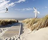 Artland Qualität I Alu Küchenrückwand Spritzschutz Küche 90 x 75 cm Landschaften Strand Meer Foto Blau F1QZ Nordseestrand auf Langeoog mit Möwen