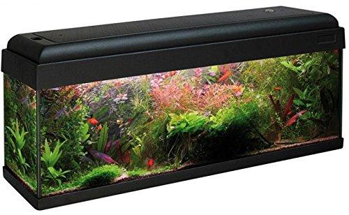 ACQUARIO AQUARMONY 100 (100X30) - Acquario in vetro completo di coperchio plastico, sistema di illuminazione con portalampade a tenuta stagna, filtro biologico, pompa di ricircolo e termoriscaldatore.