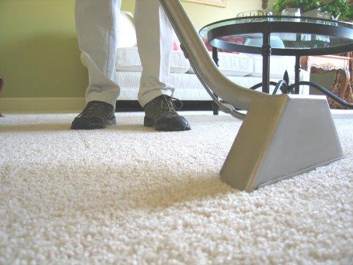 alfombras-limpieza-servicio-muestra-business-plan-de-plantilla-en-espanol
